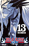 bleach tome 13 couverture