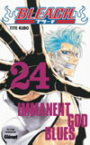 bleach tome 24 couverture
